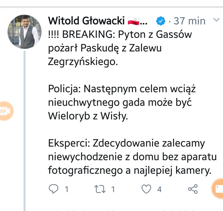 Paskuda zZalewu Zegrzyńskiego kontra pyton tygrysi  zGassów